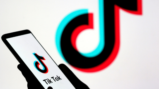 Culture Scout: A Perfect Week to De-stress with 4 Articles and a Viral Tiktok